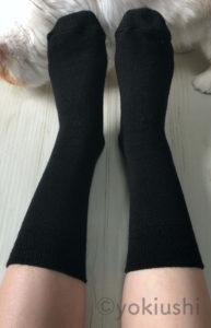 足の冷えない不思議な靴下